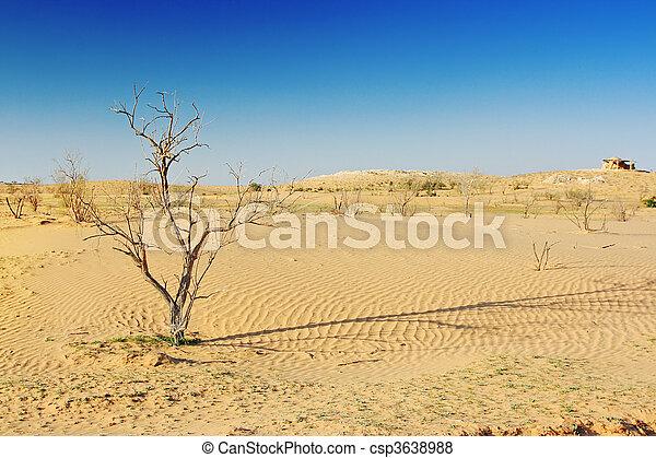 The spring in the desert - csp3638988