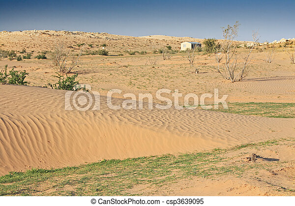 The spring in the desert - csp3639095