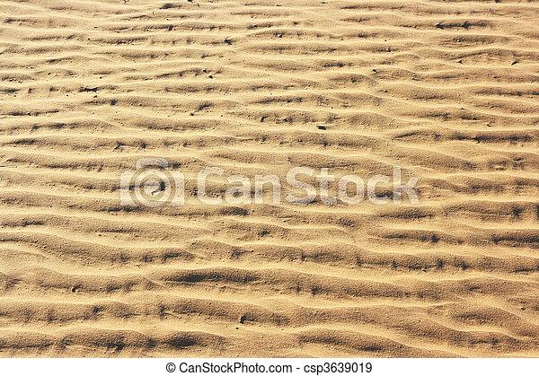 The spring in the desert - csp3639019