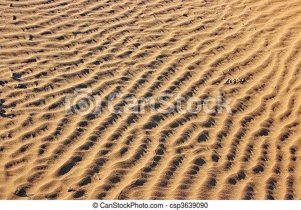 The spring in the desert - csp3639090