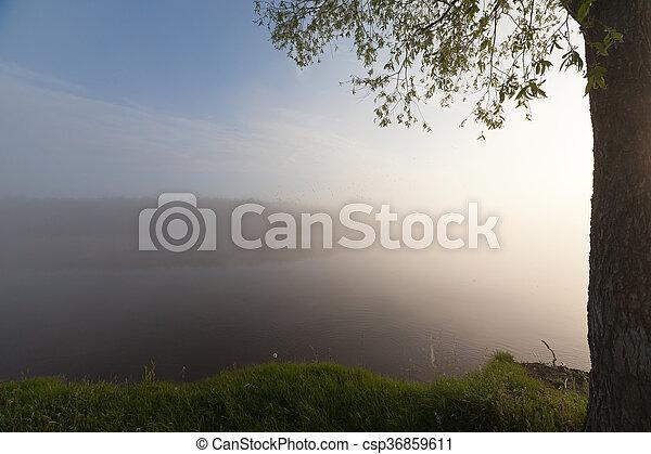 The Springtime Shoreline of a Foggy Mountain Lake at Sunrise - csp36859611