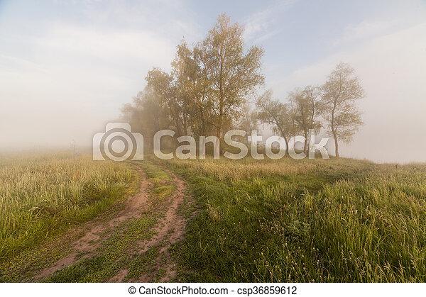 The Springtime Shoreline of a Foggy Mountain Lake at Sunrise - csp36859612
