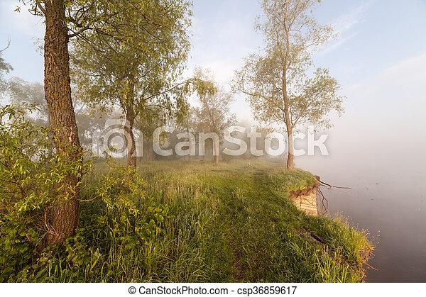 The Springtime Shoreline of a Foggy Mountain Lake at Sunrise - csp36859617