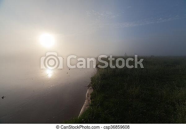 The Springtime Shoreline of a Foggy Mountain Lake at Sunrise - csp36859608