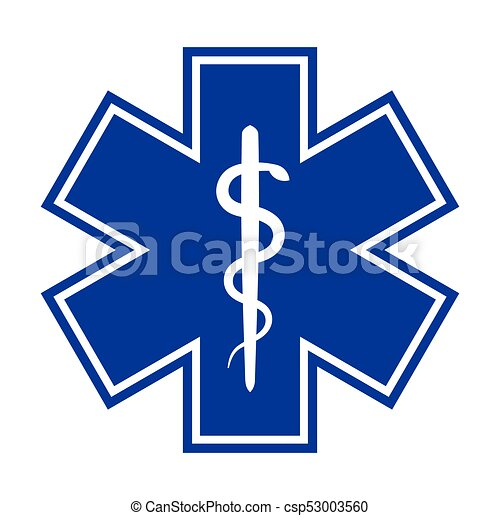 Star Of Texas Star Of Life Texas State Flag Decal Tx Texan