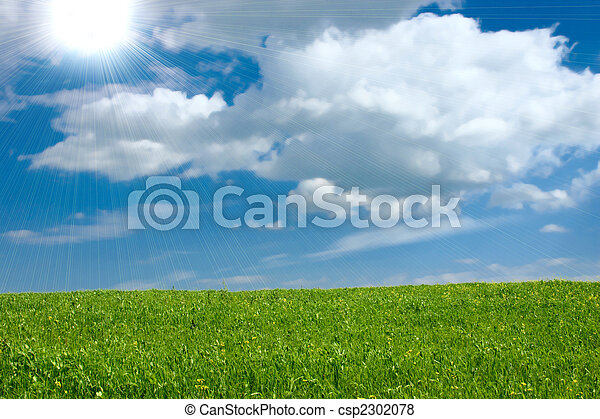 The summer green meadow which has been removed against the blue sky - csp2302078