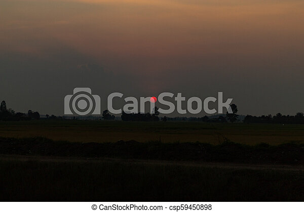 The sunset behind paddy fields and trees. - csp59450898