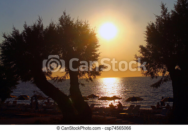The sunset behind the trees - csp74565066