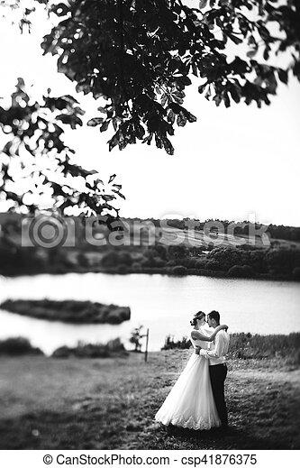 The tenderness brides - csp41876375