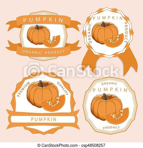 The theme pumpkin - csp48508257