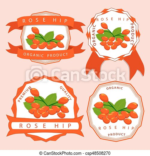 The theme rose hip - csp48508270