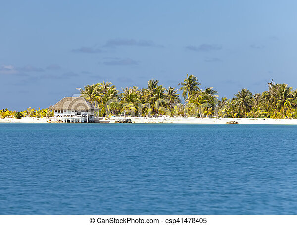 The tropical island with palm trees in the sea - csp41478405