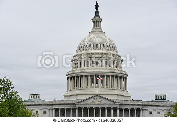 The US Capitol in Washington DC, USA