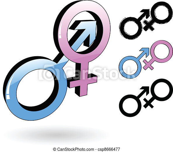 The Vector Male And Female Symbol Vectors Illustration Search