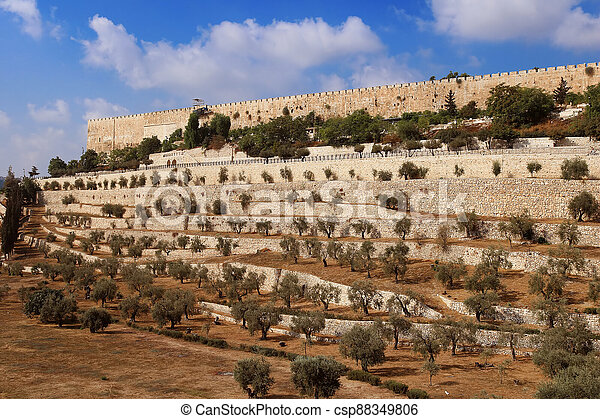 The Wall of the Old City of Jerusalem, Israel - csp88349806
