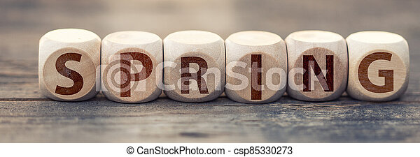 The word spring on wooden cubes - csp85330273