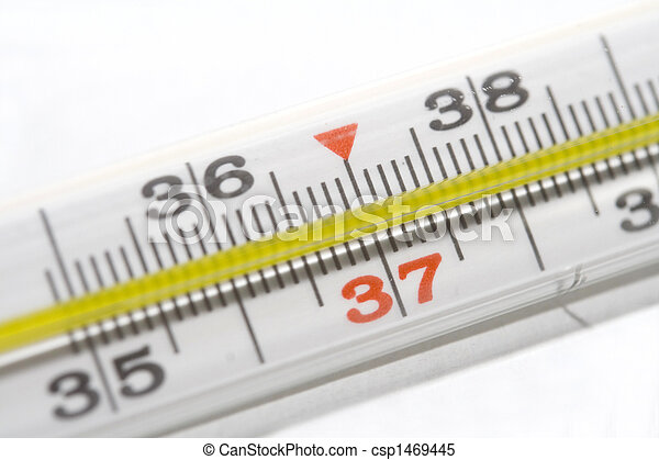 Thermometer - csp1469445