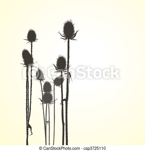 Thistle, isolated vector objects - csp3725110
