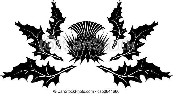 Thistle ornament - csp8644666