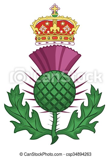 Thistle Symbol Of Scotland - csp34894263