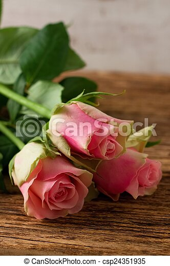 Three beautiful pink roses on wooden board - csp24351935