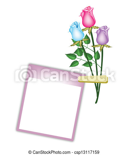 Three Beautiful Roses with Purple Blank Photo - csp13117159