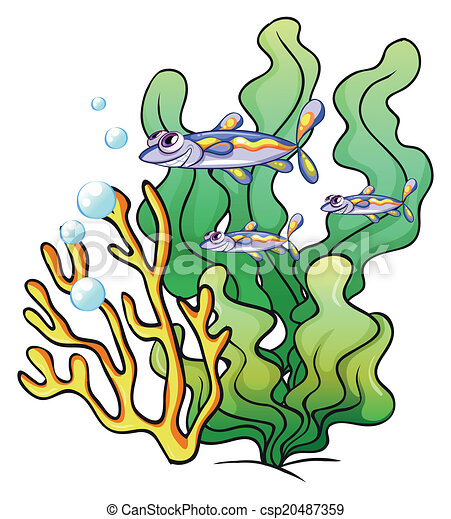 illustration of the three fishes under the sea near the clipart rh canstockphoto com under the sea clip art shapes under the sea clipart