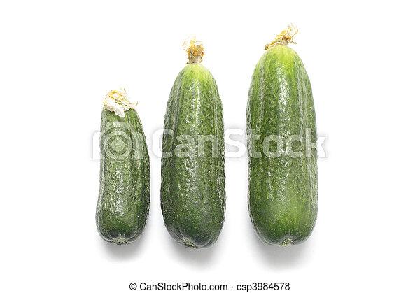 Three ripe cucumbers isolated on white background - csp3984578