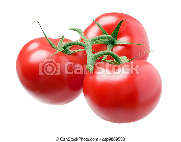 Three tomatoes isolated on white background. - csp9889530