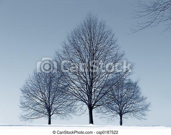 Three Trees - csp0187522