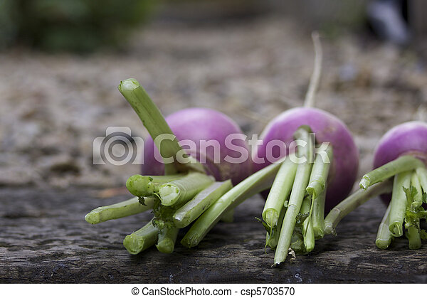 Three Turnips - csp5703570