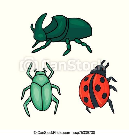 Three types of beetles. Ladybug and green bug. Vector illustration - csp75339730