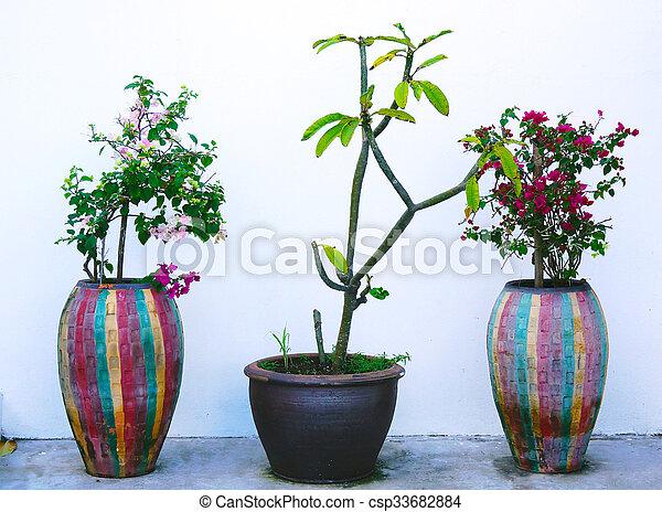 Three Vase On White Background Three Vases With Flowers On
