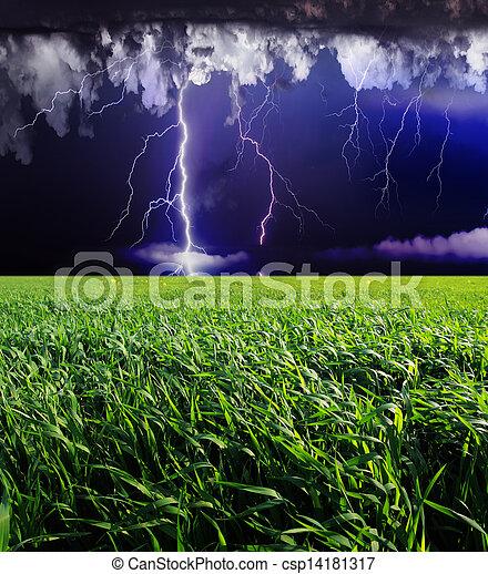 Thunderstorm - csp14181317