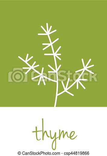 thyme icon on green square - csp44819866