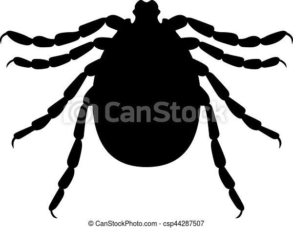 Tick - csp44287507