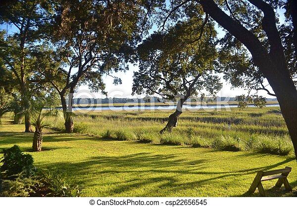 Tidal Salt Marsh on a Sunny Day - csp22656545