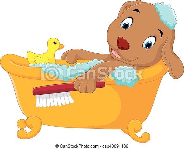 Lindo baño de perros - csp40091186