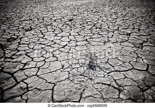 Tierra desértica del desierto - csp5569509