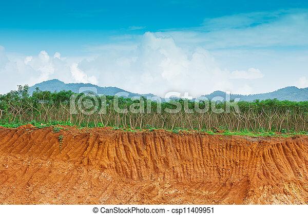 Suelo bajo tierra en la granja de la cassava. Condición de la erosión como el acantilado por humano - csp11409951
