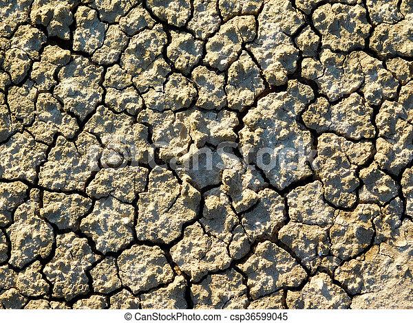 Textura de tierra - csp36599045