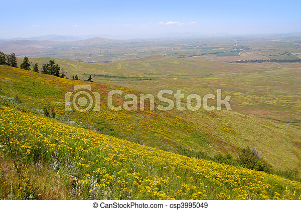 tierras, pradera - csp3995049