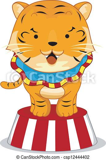 tiger, プラットホーム, サーカス - csp12444402