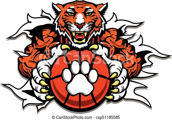 tiger basketball mascot ripping through background for vector rh canstockphoto ca  tiger mascot clip art vinyl decal