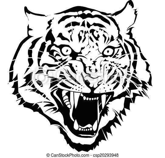 black and white tiger head vector by illuatraror rh canstockphoto com tiger vector free download tiger vector free download