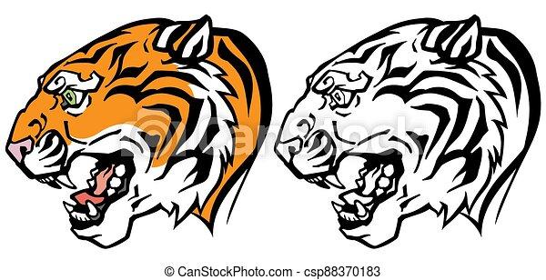 tiger head profile - csp88370183