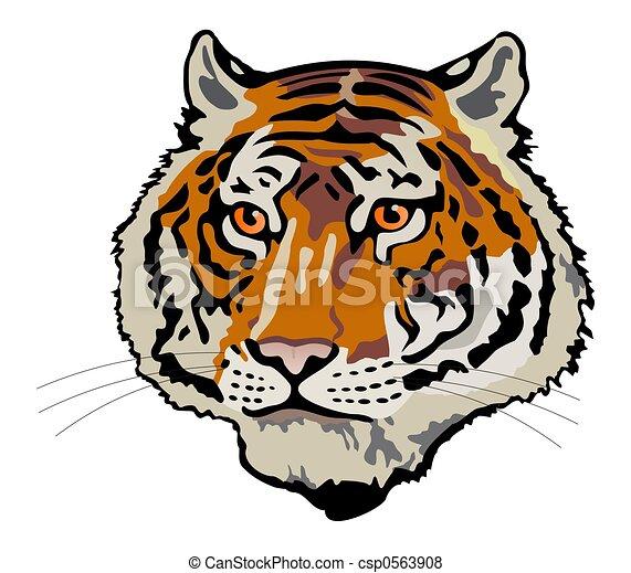 tiger head - csp0563908
