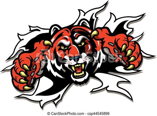 tiger mascot ripping through the background for school eps rh canstockphoto com tiger mascot clipart black and white