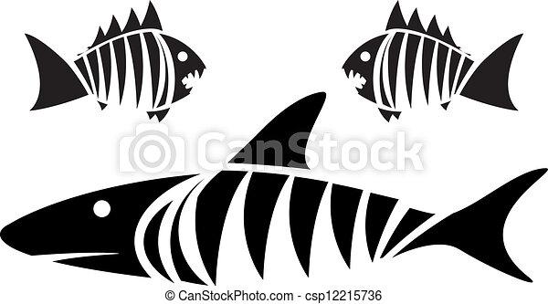 tiger, piranhas, squalo - csp12215736