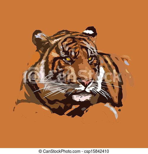 tiger - csp15842410